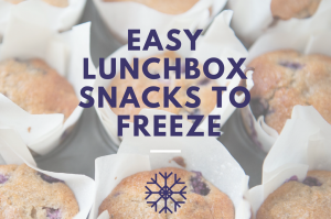 Great freezable lunchbox snacks for little lunch